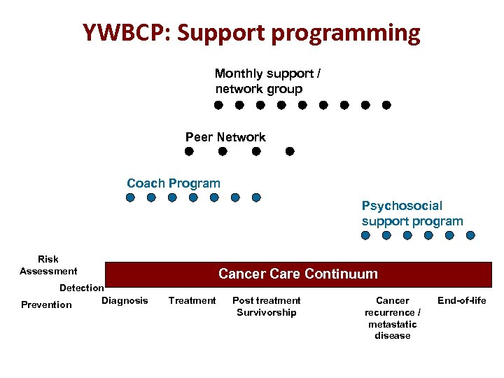 YWBCP: Support programming Monthly support / network group Peer Network Coach Program Psychosocial support