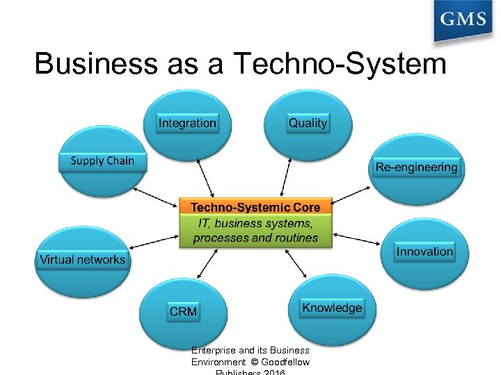 Business as a Techno-System Enterprise and its Business Environment © Goodfellow