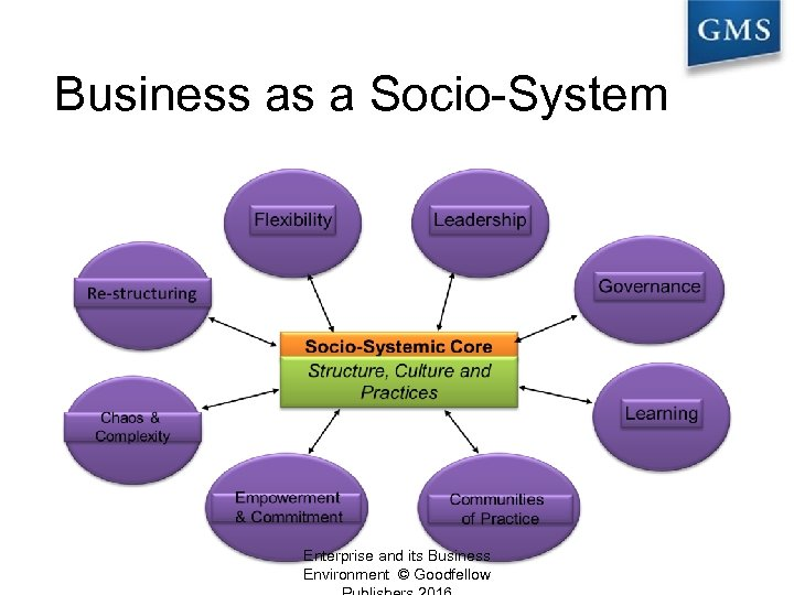 Business as a Socio-System Enterprise and its Business Environment © Goodfellow