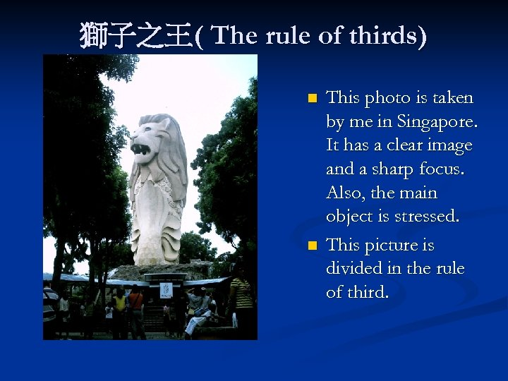 獅子之王( The rule of thirds) n n This photo is taken by me in