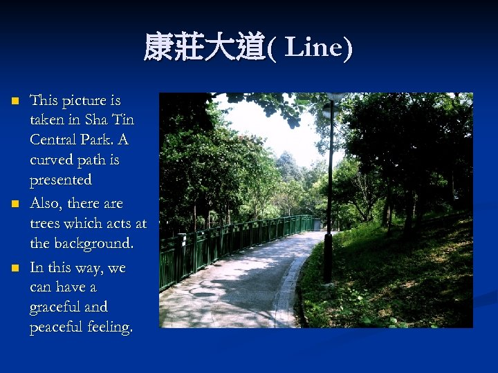 康莊大道( Line) n n n This picture is taken in Sha Tin Central Park.