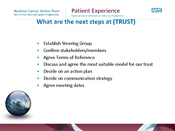 What are the next steps at (TRUST) • • Establish Steering Group Confirm stakeholders/members