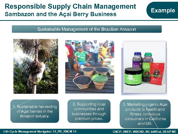 Responsible Supply Chain Management Sambazon and the Açai Berry Business Example Sustainable Management of