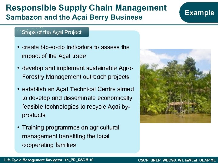 Responsible Supply Chain Management Sambazon and the Açai Berry Business Example Steps of the