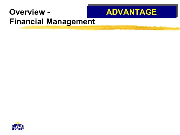 Overview Financial Management ADVANTAGE