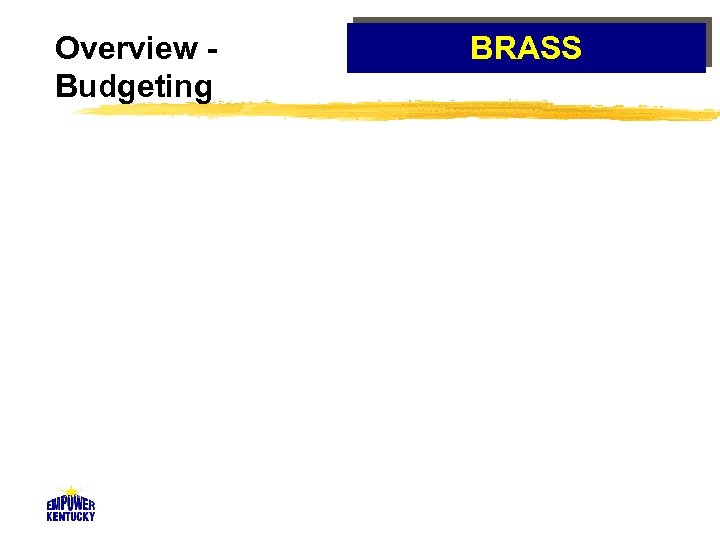 Overview Budgeting BRASS