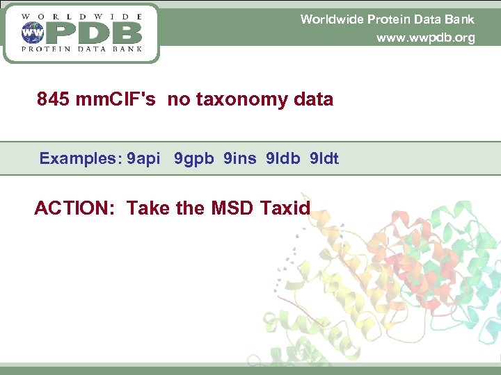 Worldwide Protein Data Bank www. wwpdb. org 845 mm. CIF's no taxonomy data Examples: