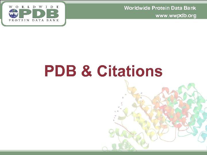 Worldwide Protein Data Bank www. wwpdb. org PDB & Citations