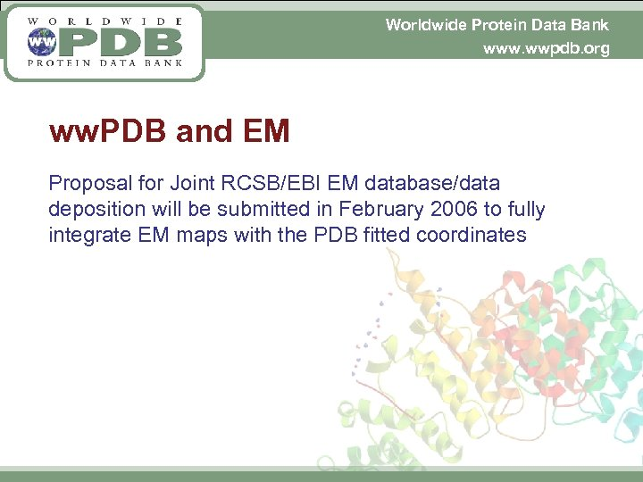 Worldwide Protein Data Bank www. wwpdb. org ww. PDB and EM Proposal for Joint