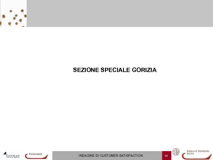 SEZIONE SPECIALE GORIZIA INDAGINE DI CUSTOMER SATISFACTION 45