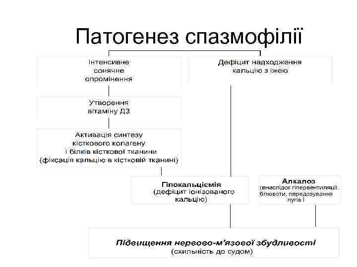 Патогенез спазмофілії