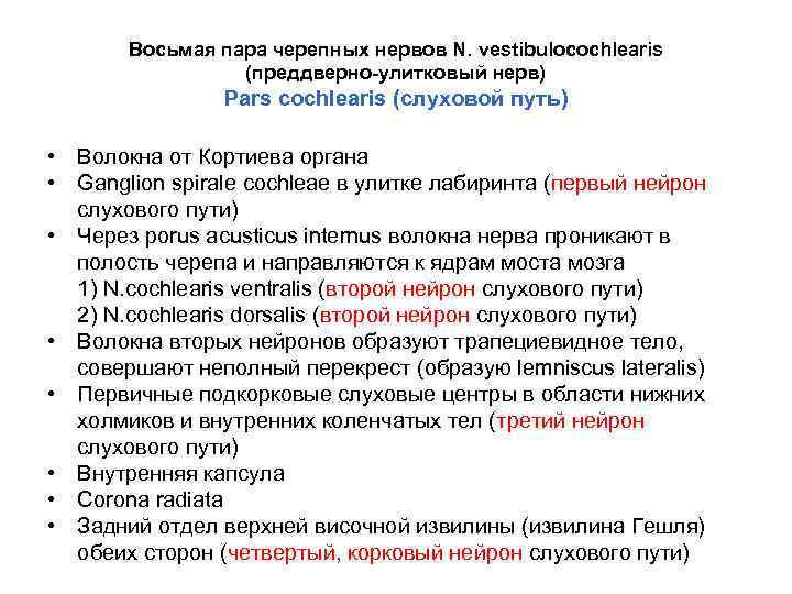 Восьмая пара черепных нервов N. vestibulocochlearis (преддверно-улитковый нерв) Pars cochlearis (слуховой путь) • Волокна