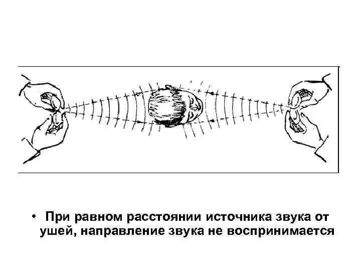 • При равном расстоянии источника звука от ушей, направление звука не воспринимается
