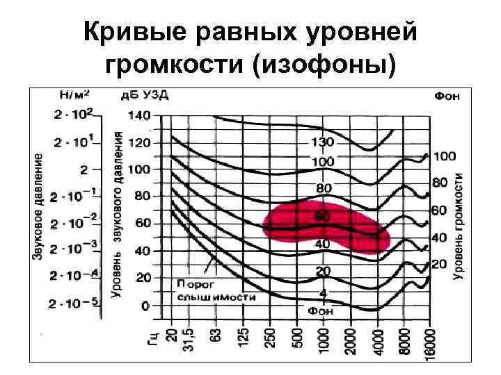 Кривые равных уровней громкости (изофоны)