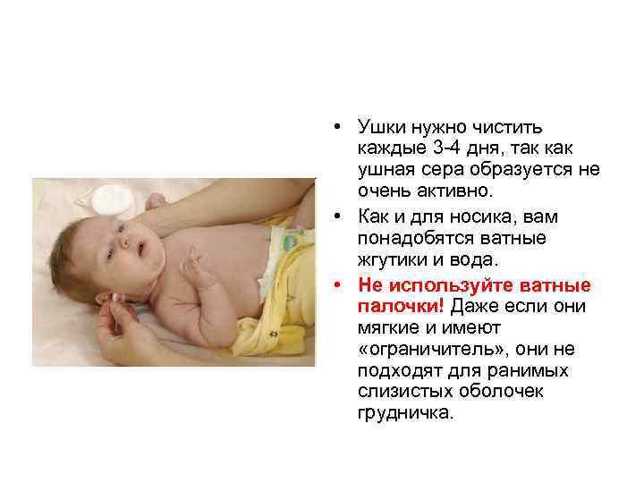 • Ушки нужно чистить каждые 3 4 дня, так как ушная сера образуется