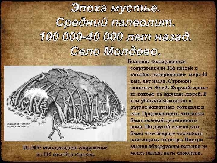 Эпоха мустье. Средний палеолит. 100 000 -40 000 лет назад. Село Молдово. Ил. №
