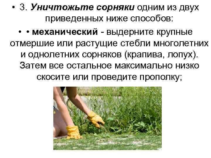 • 3. Уничтожьте сорняки одним из двух приведенных ниже способов: • • механический