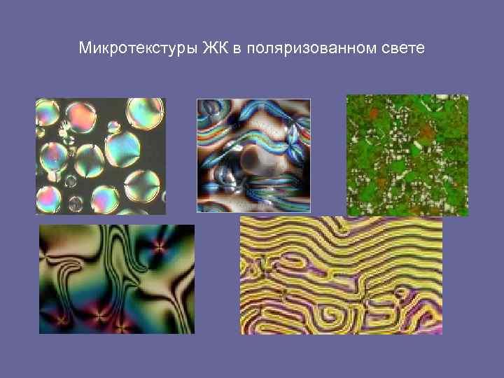 Микротекстуры ЖК в поляризованном свете