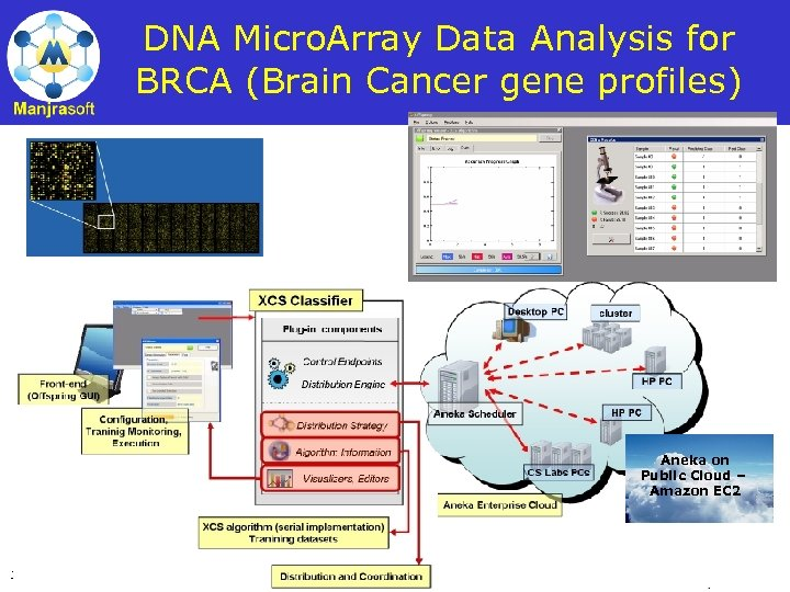 DNA Micro. Array Data Analysis for BRCA (Brain Cancer gene profiles) Aneka on Public