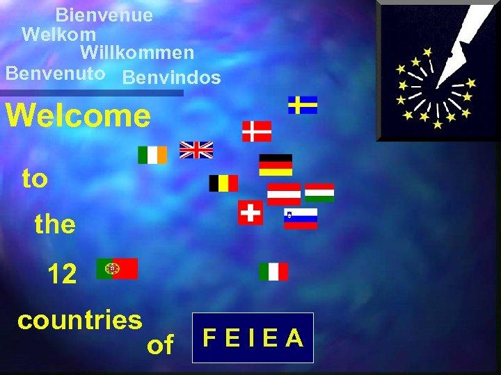 Bienvenue Welkom Willkommen Benvenuto Benvindos Welcome to the 12 countries of FEIEA