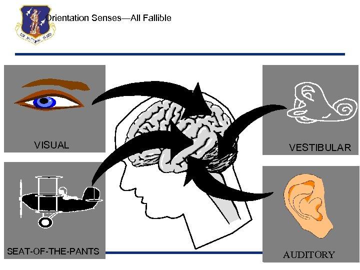 Orientation Senses—All Fallible VISUAL SEAT-OF-THE-PANTS VESTIBULAR AUDITORY