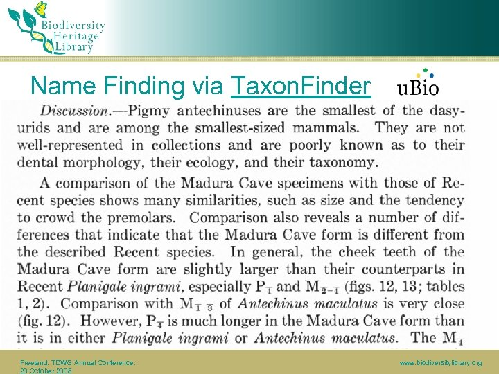 Name Finding via Taxon. Finder Freeland. TDWG Annual Conference. 20 October 2008 www. biodiversitylibrary.