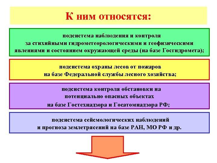 К ним относятся: подсистема наблюдения и контроля за стихийными гидрометеорологическими и геофизическими явлениями и