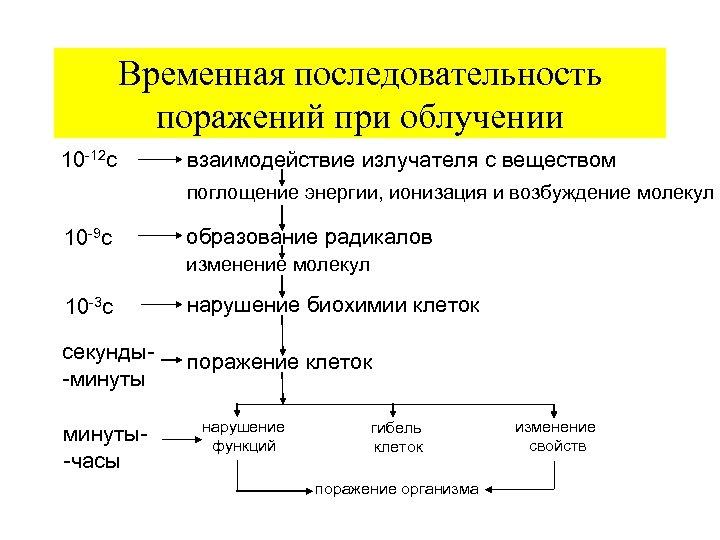 Временная последовательность поражений при облучении 10 -12 с взаимодействие излучателя с веществом поглощение энергии,