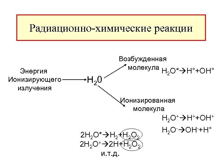 Радиационно-химические реакции Энергия Ионизирующего излучения Возбужденная молекула H 2 O* H°+OH° H 20 Ионизированная