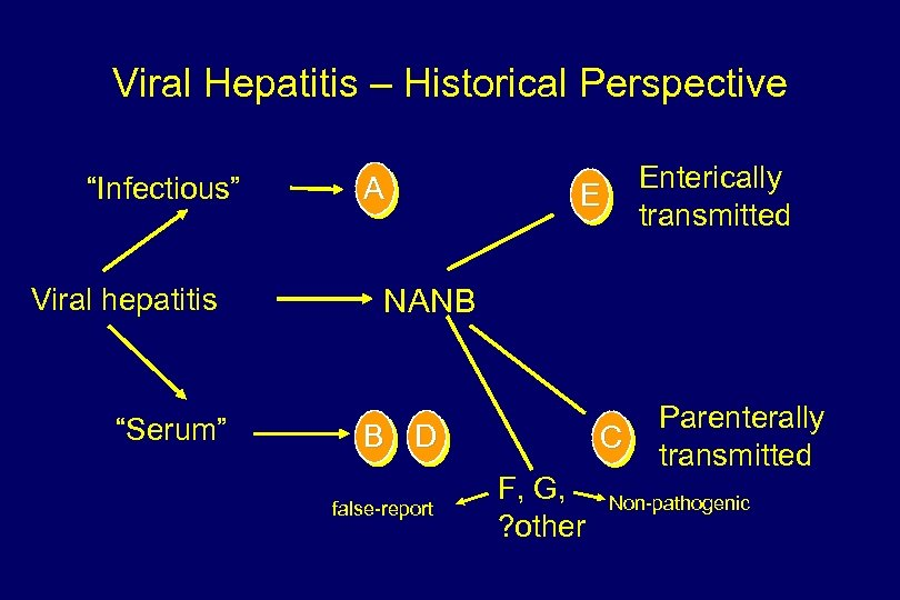 "Viral Hepatitis – Historical Perspective ""Infectious"" Viral hepatitis ""Serum"" A Enterically transmitted E NANB"
