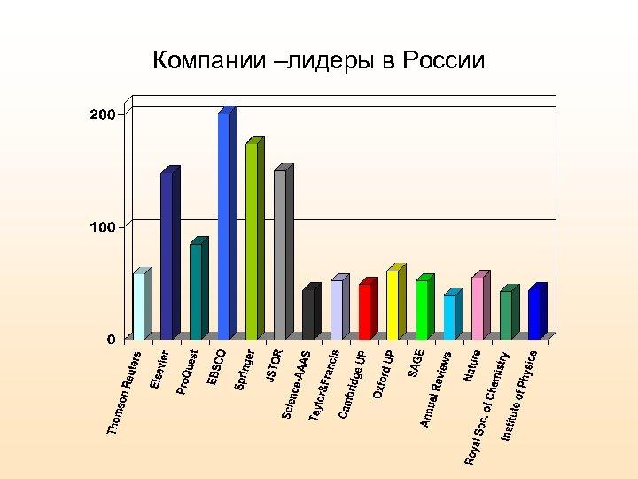 Компании –лидеры в России