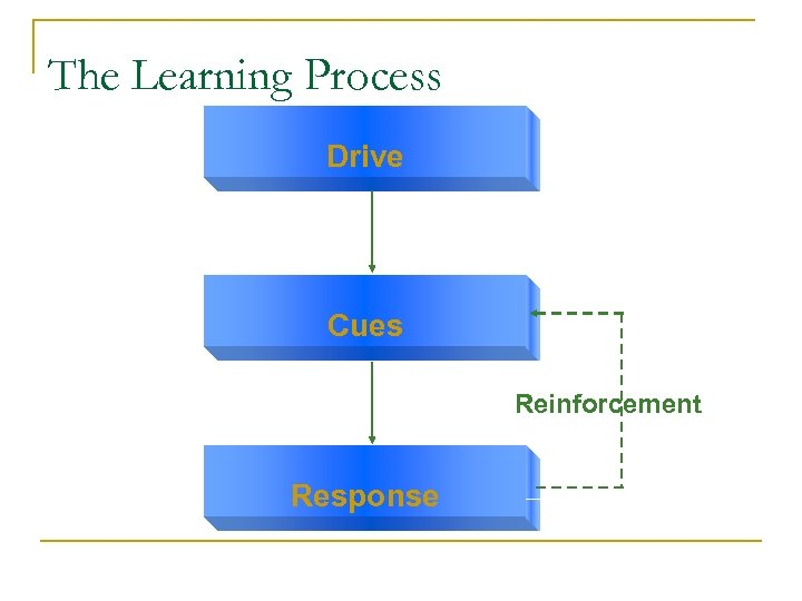 The Learning Process Drive Cues Reinforcement Response