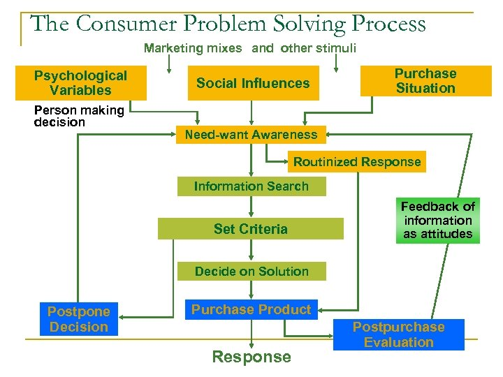 The Consumer Problem Solving Process Marketing mixes and other stimuli Psychological Variables Person making
