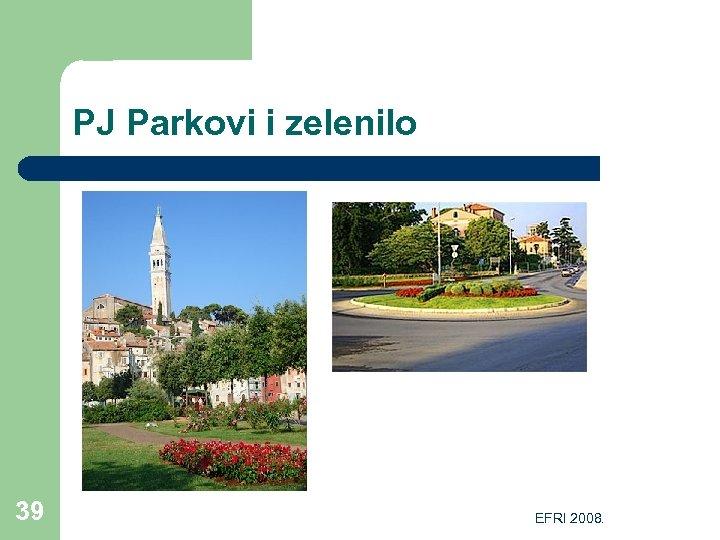 PJ Parkovi i zelenilo 39 EFRI 2008.