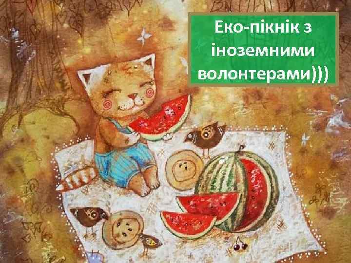 Еко-пікнік з іноземними волонтерами)))