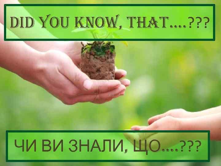 did you Know, that. . ? ? ? ЧИ ВИ ЗНАЛИ, ЩО. . ?