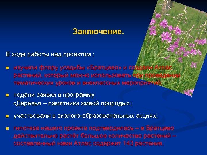 Заключение. В ходе работы над проектом : n изучили флору усадьбы «Братцево» и создали