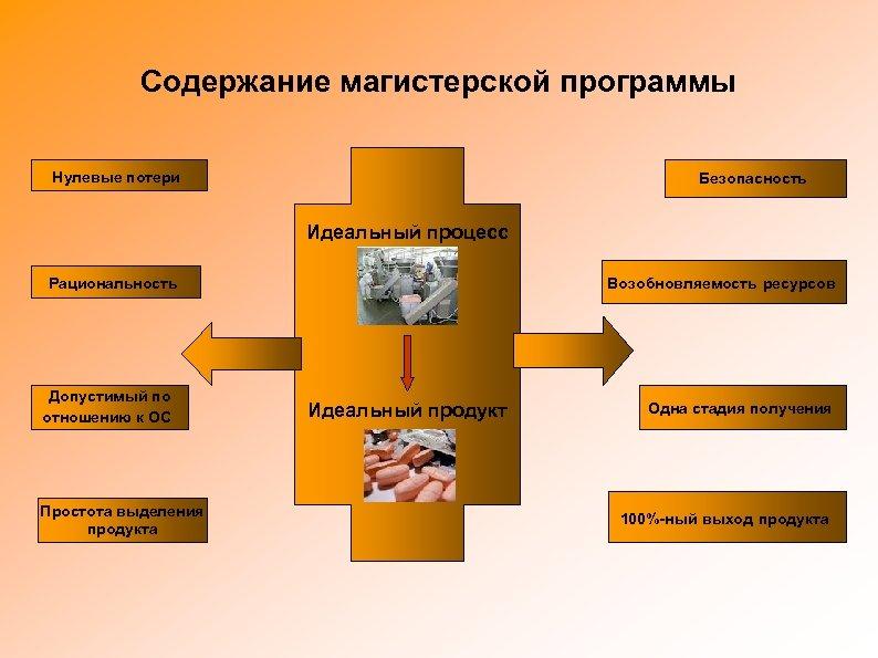 Содержание магистерской программы Нулевые потери Безопасность Идеальный процесс Рациональность Допустимый по отношению к ОС
