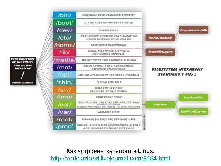 Как устроены каталоги в Linux. http: //vodolazbest. livejournal. com/9184. html