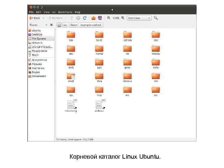 Корневой каталог Linux Ubuntu.