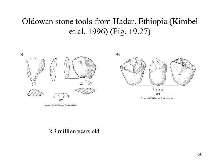 Oldowan stone tools from Hadar, Ethiopia (Kimbel et al. 1996) (Fig. 19. 27) 2.