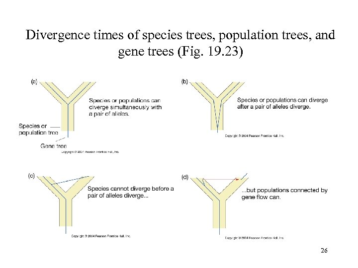 Divergence times of species trees, population trees, and gene trees (Fig. 19. 23) 26