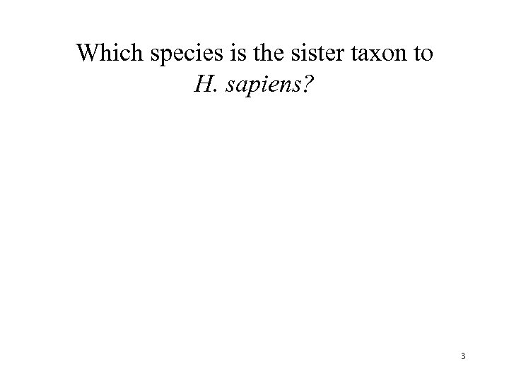 Which species is the sister taxon to H. sapiens? 3