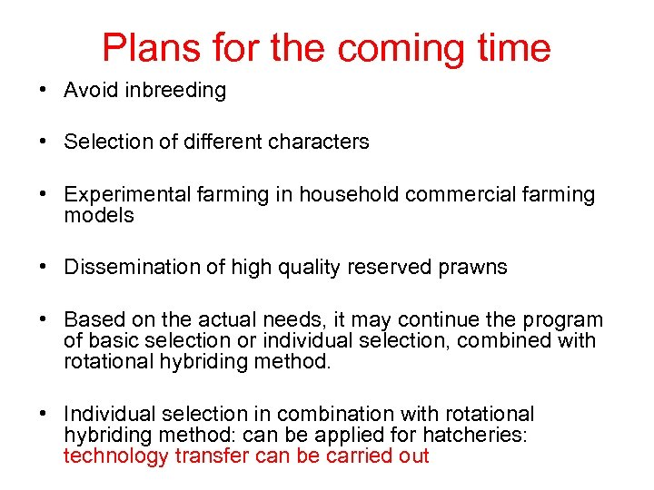 Plans for the coming time • Avoid inbreeding • Selection of different characters •