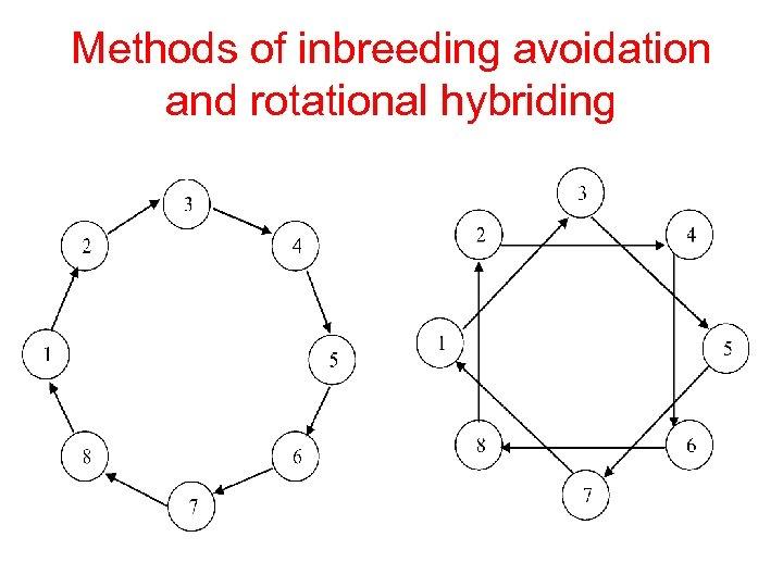 Methods of inbreeding avoidation and rotational hybriding