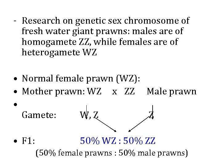 - Research on genetic sex chromosome of fresh water giant prawns: males are of