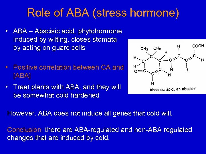 Role of ABA (stress hormone) • ABA – Abscisic acid, phytohormone induced by wilting,