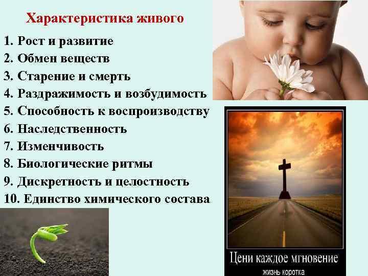 Характеристика живого 1. Рост и развитие 2. Обмен веществ 3. Старение и смерть 4.