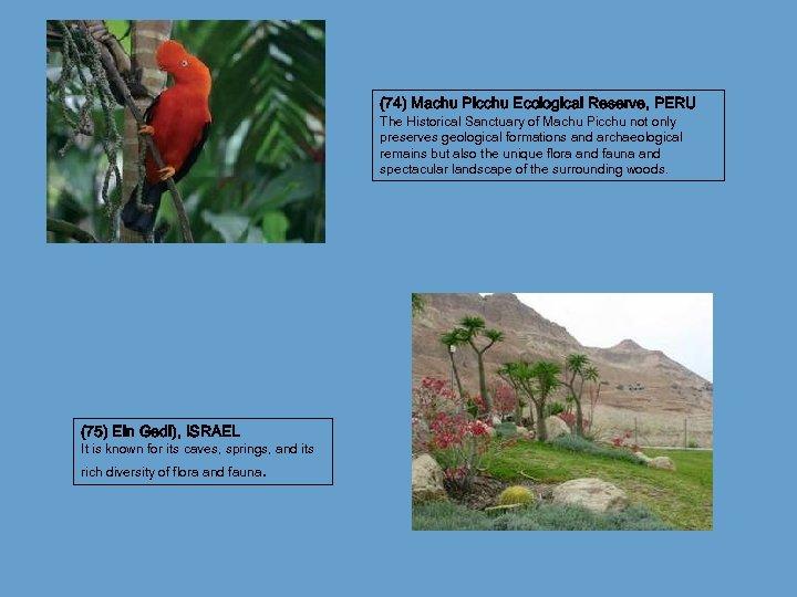 (74) Machu Picchu Ecological Reserve, PERU The Historical Sanctuary of Machu Picchu not only