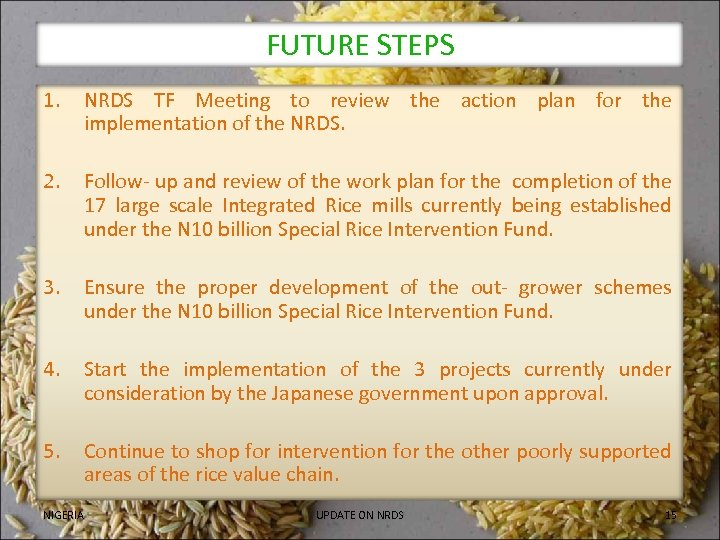 FUTURE STEPS 1. NRDS TF Meeting to review the action plan for the implementation